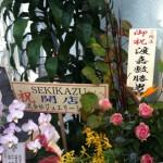 akioka03